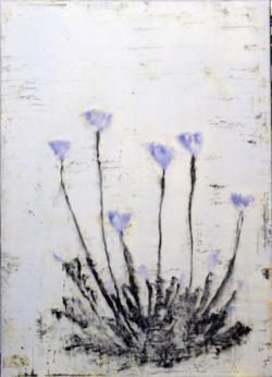647 Ao keshi (Blue Poppy) 26 by 36 inches